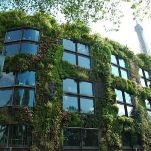 Citizensourcing in Paris: vertical gardens