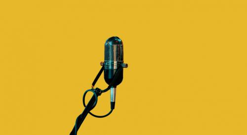 """""""Wat veranderd is,  is niet de technologie, maar dat de overheid luistert."""" – een interview met Marci Harris"""