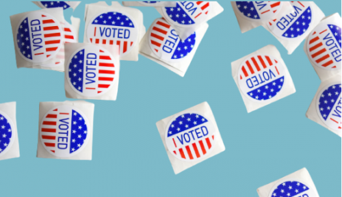 Direct ballots in the US election: what's changed for citizen engagement